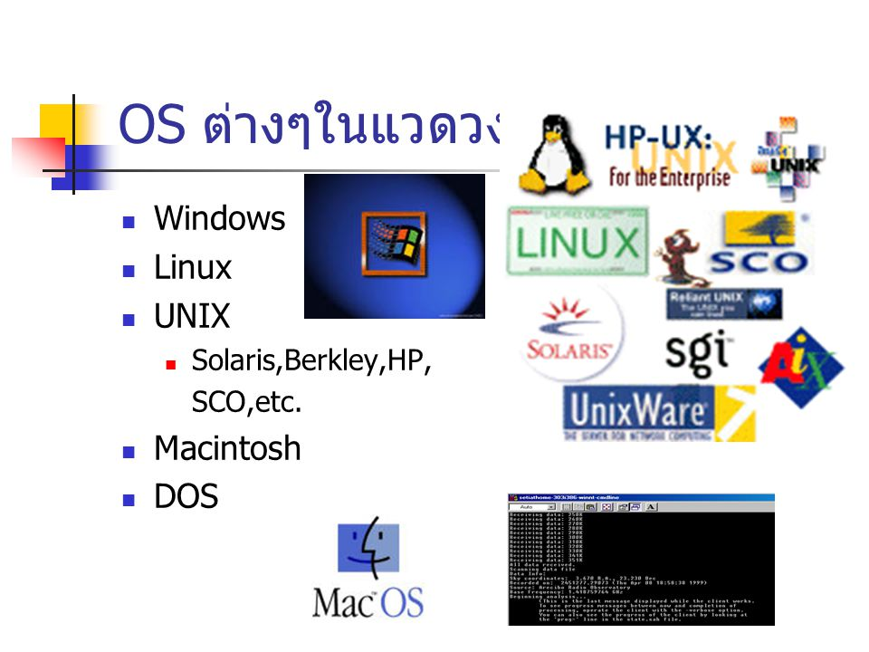 OS ต่างๆในแวดวง Windows Linux UNIX Macintosh DOS Solaris,Berkley,HP,