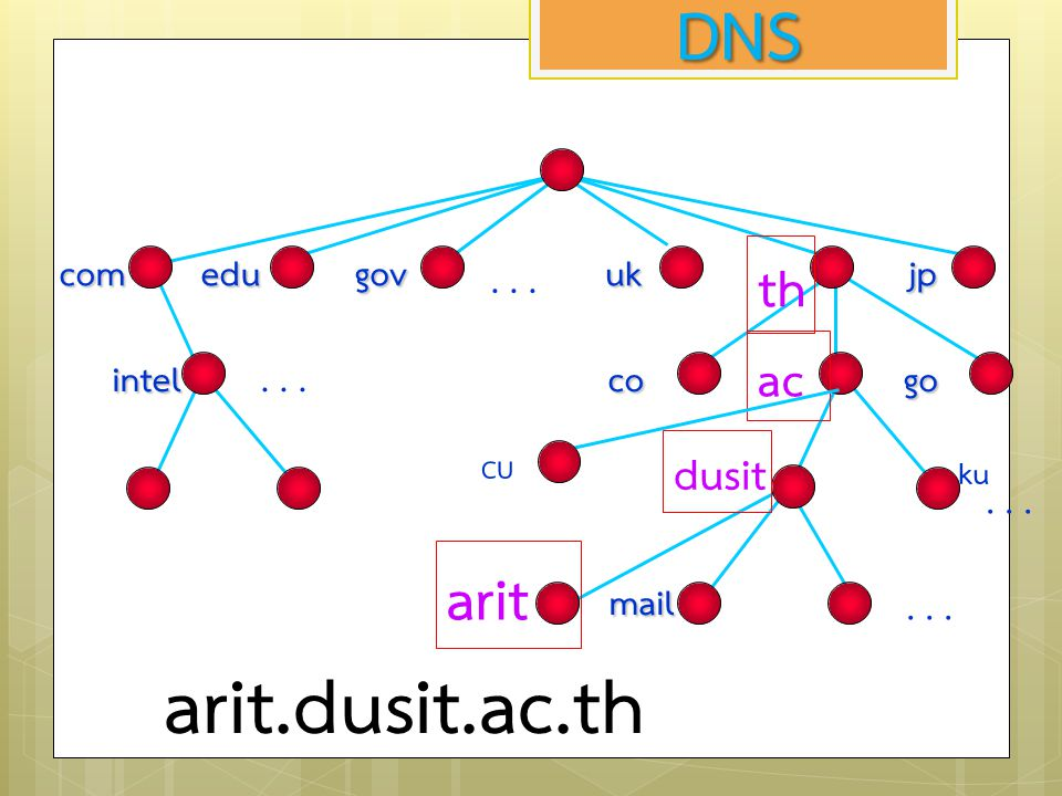 arit.dusit.ac.th DNS arit th ac dusit com edu gov uk jp co go mail