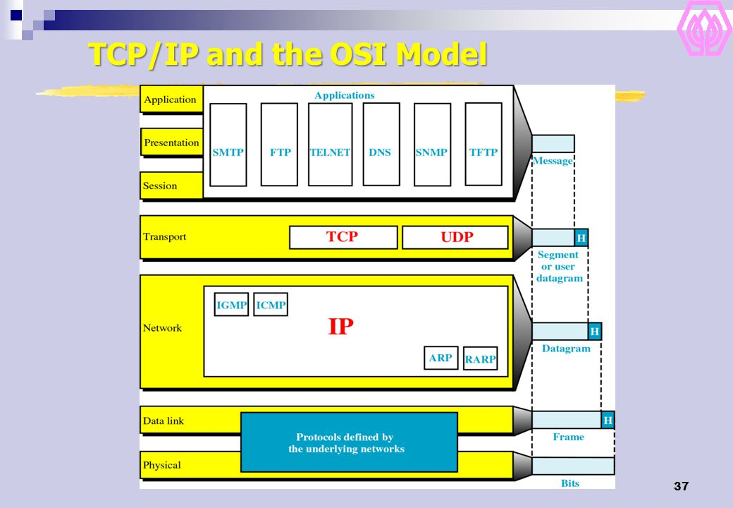 TCP/IP and the OSI Model