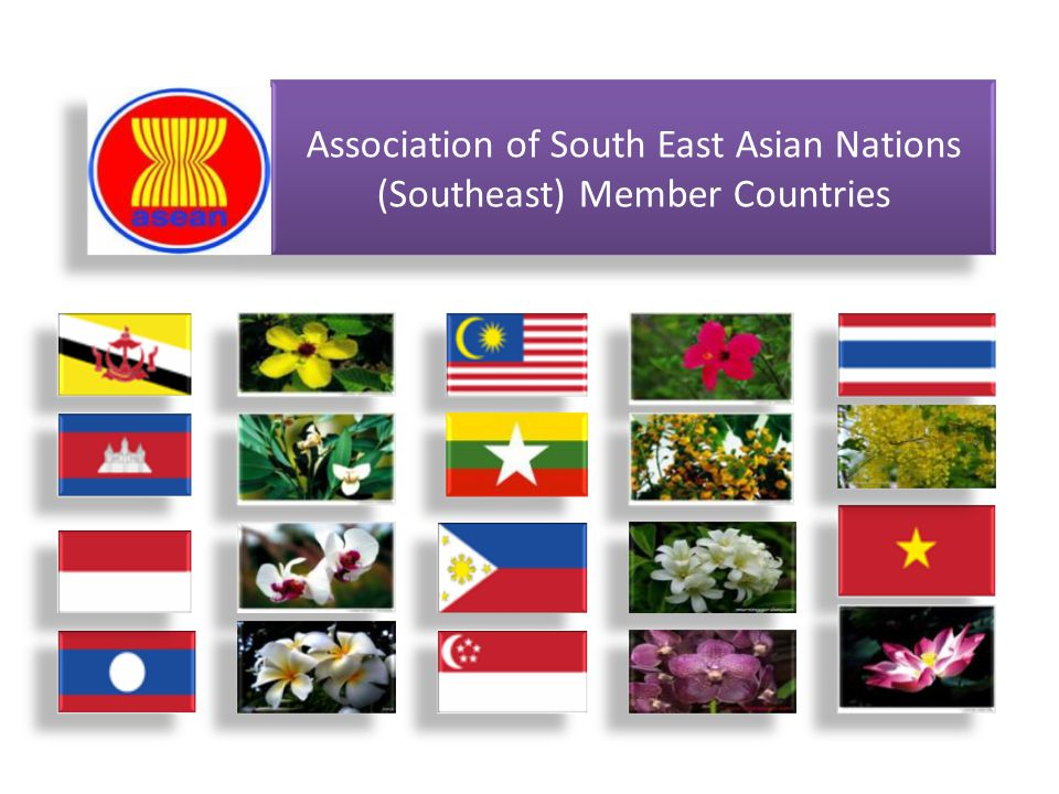 Association of South East Asian Nations (Southeast) Member Countries