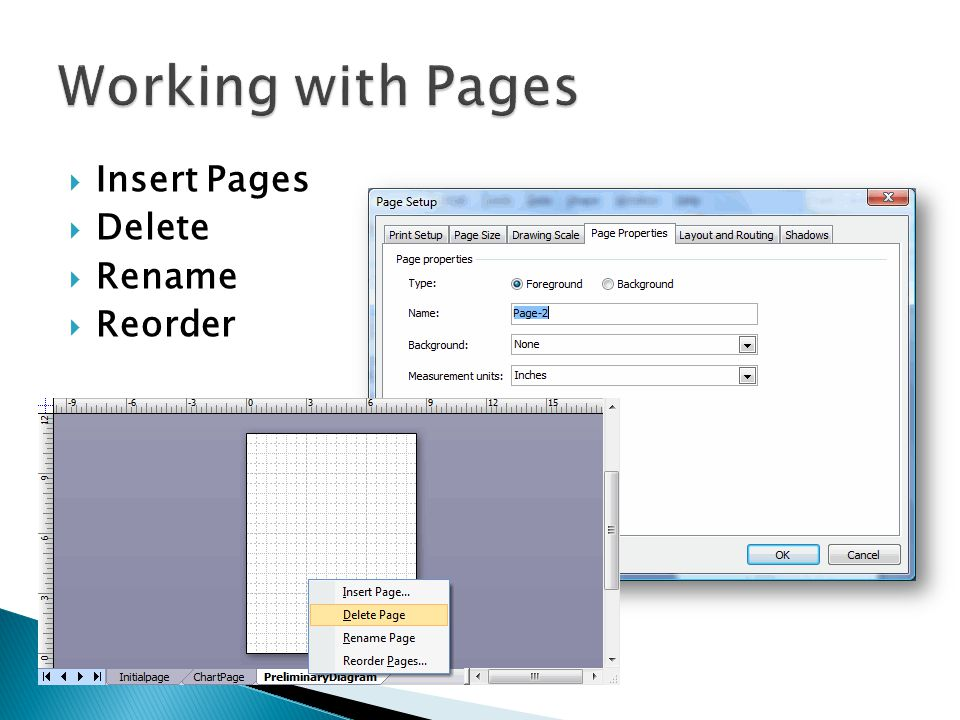 Working with Pages Insert Pages Delete Rename Reorder