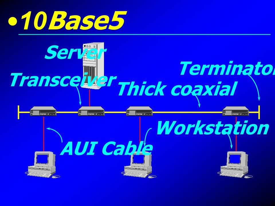 10Base5 Server Terminator Transceiver Thick coaxial Workstation