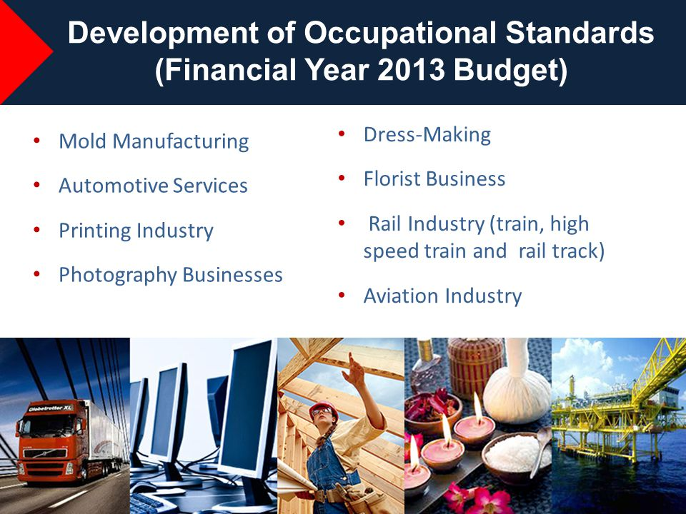 Development of Occupational Standards (Financial Year 2013 Budget)