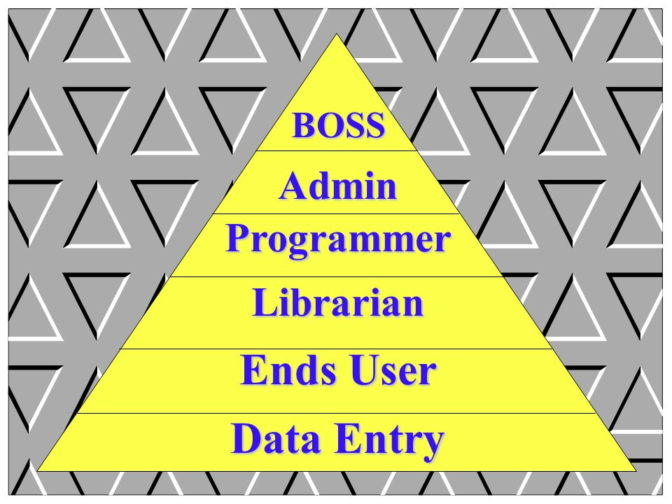 BOSS Admin Programmer Librarian Ends User Data Entry