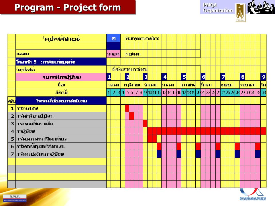 Program - Project form