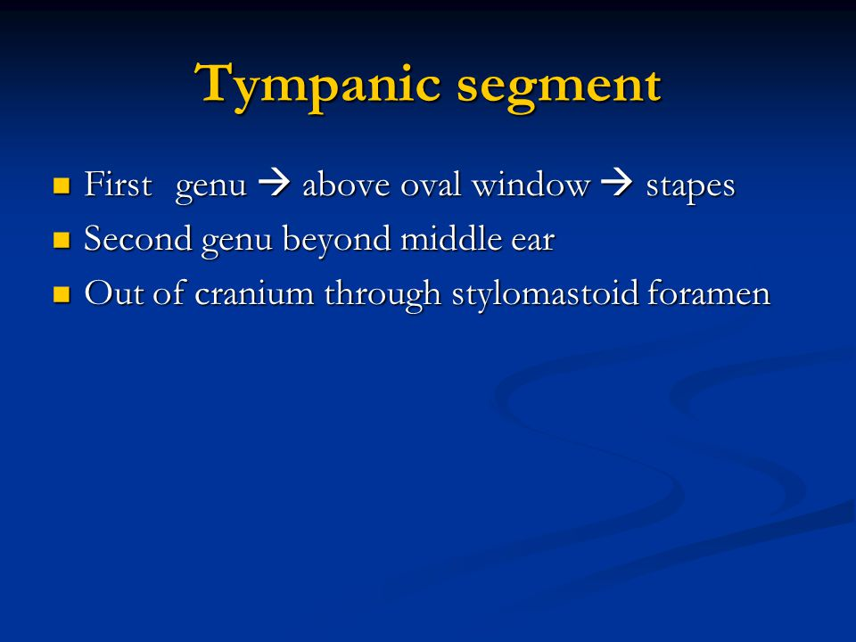 Tympanic segment First genu  above oval window  stapes