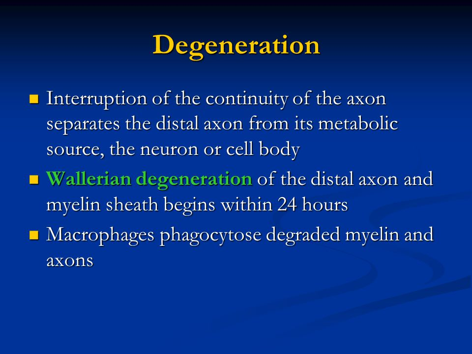 Degeneration Interruption of the continuity of the axon separates the distal axon from its metabolic source, the neuron or cell body.