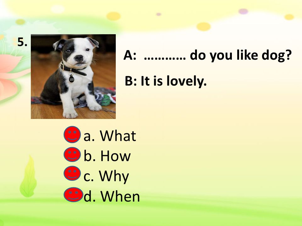 a. What b. How c. Why d. When A: ………… do you like dog