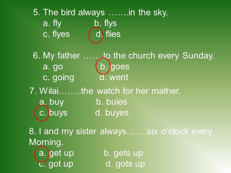 5. The bird always …….in the sky.