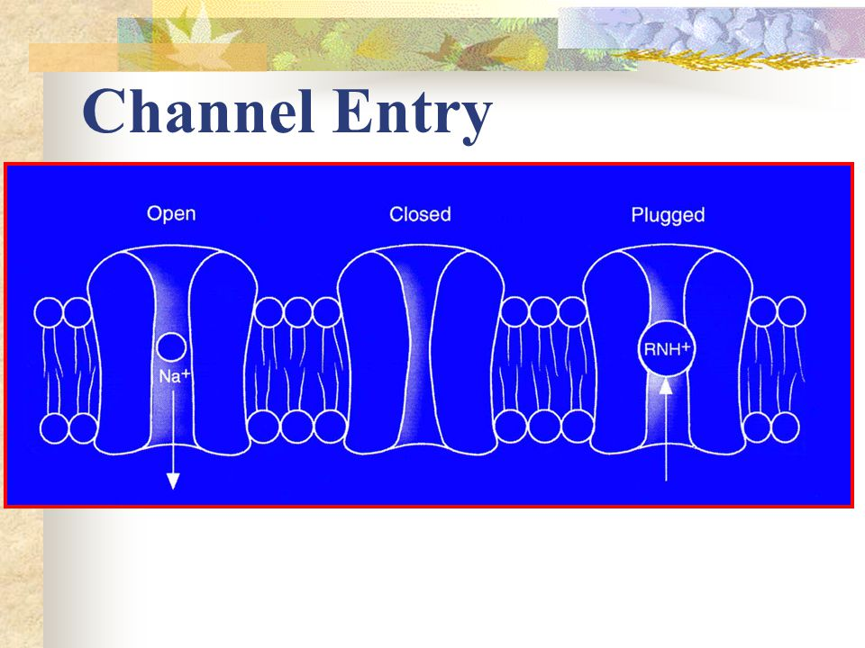 Channel Entry