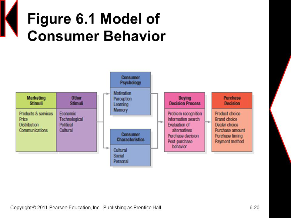 Figure 6.1 Model of Consumer Behavior