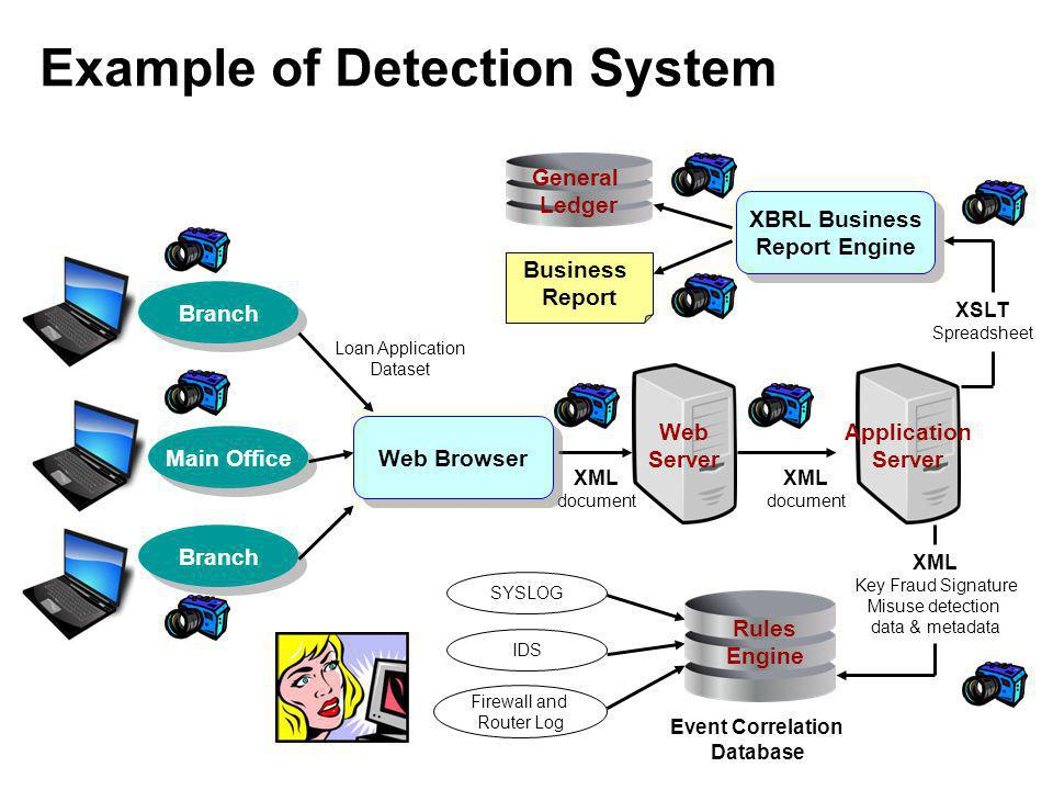 Example of Detection System