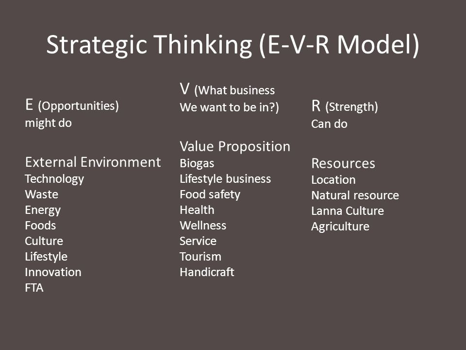 Strategic Thinking (E-V-R Model)