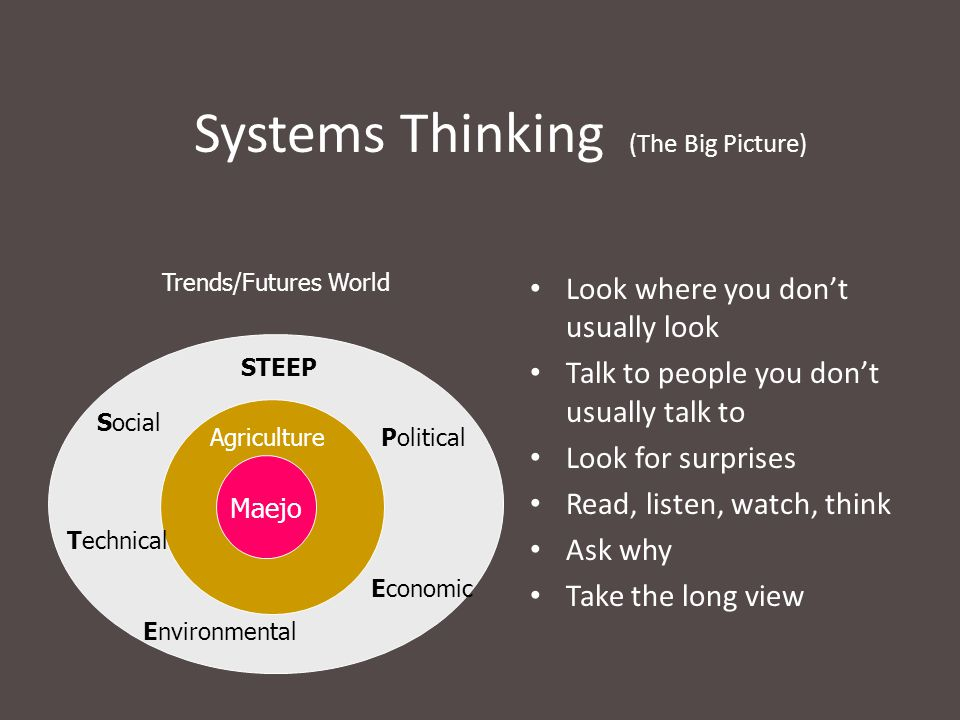 Systems Thinking (The Big Picture)