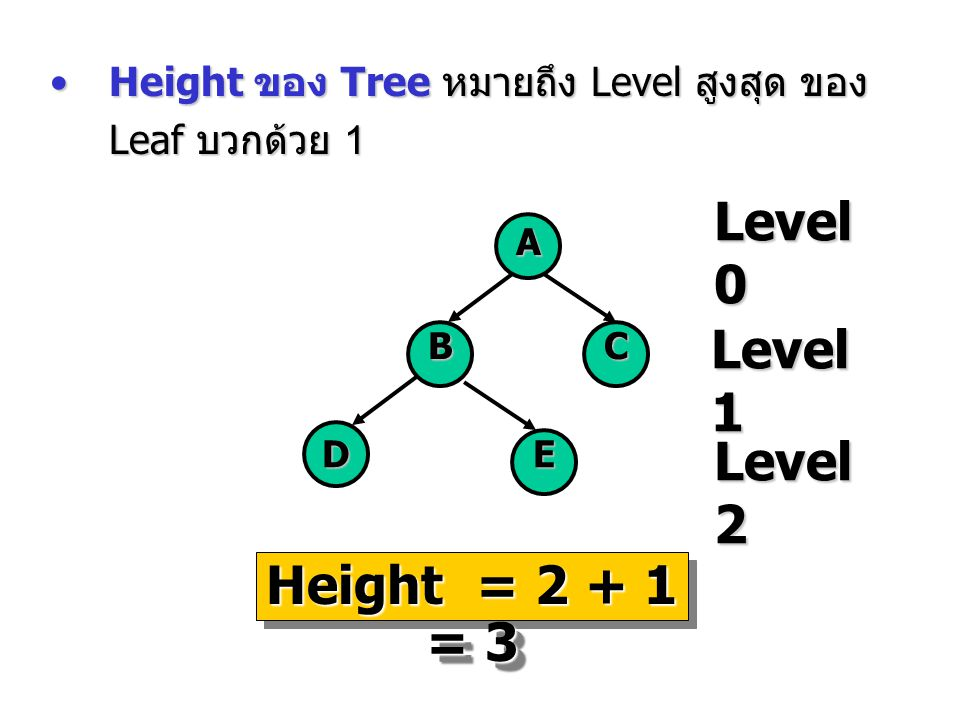 Level 0 Level 1 Level 2 Height = 2 + 1 = 3