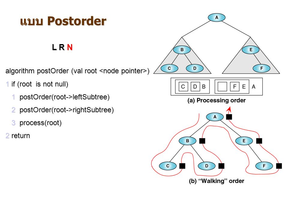 แบบ Postorder L R N. algorithm postOrder (val root <node pointer>) 1 if (root is not null) 1 postOrder(root->leftSubtree)