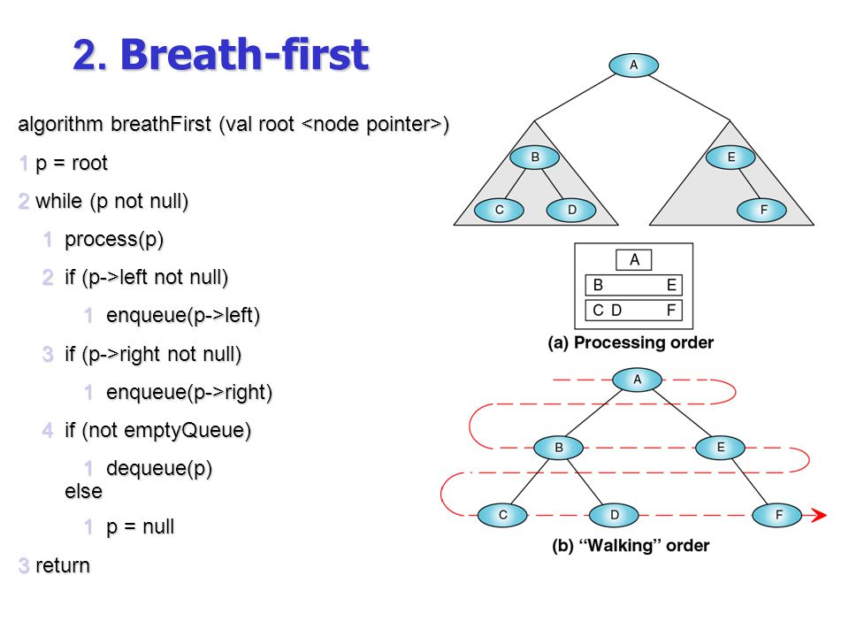 2. Breath-first algorithm breathFirst (val root <node pointer>)