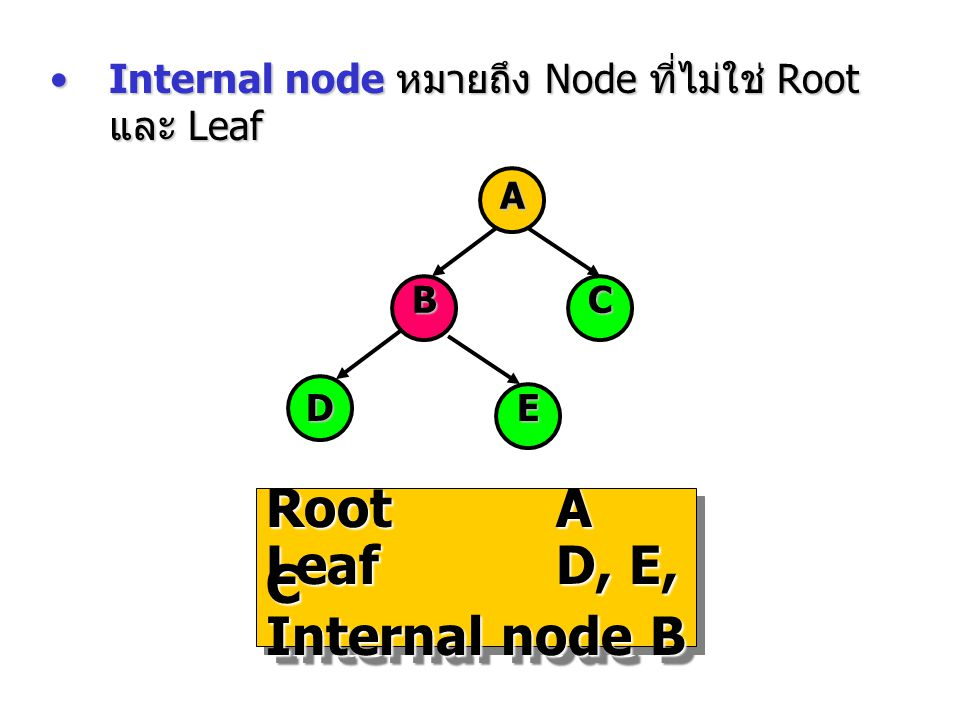 Root A Leaf D, E, C Internal node B