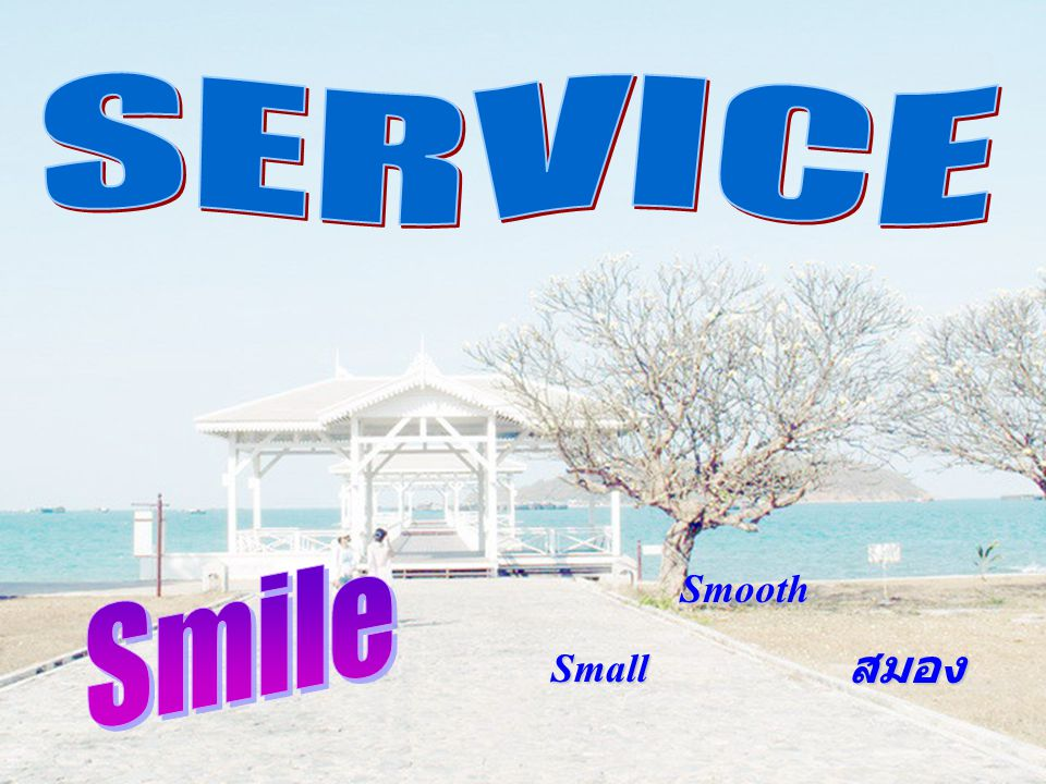 SERVICE Smile Smooth Small สมอง