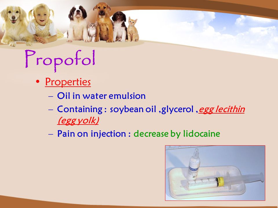 Propofol Properties Oil in water emulsion