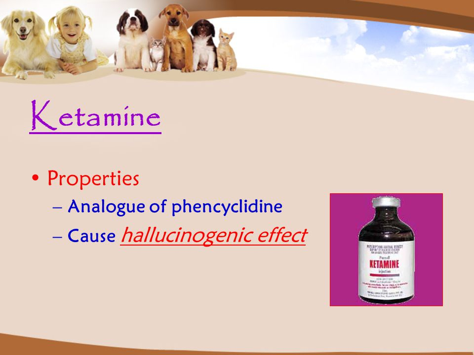 Ketamine Properties Analogue of phencyclidine