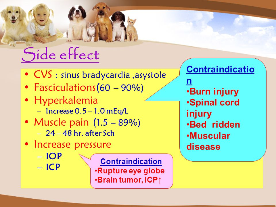 Side effect CVS : sinus bradycardia ,asystole Fasciculations(60 – 90%)