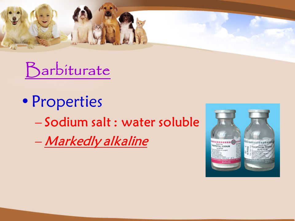 Barbiturate Properties Sodium salt : water soluble Markedly alkaline