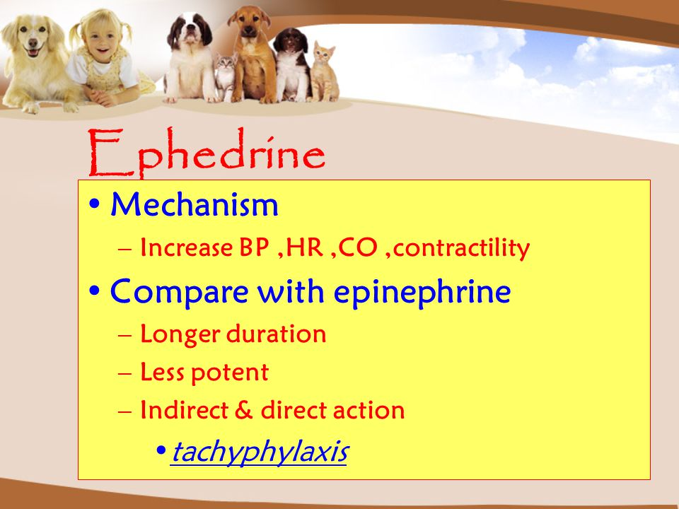 Ephedrine Mechanism Compare with epinephrine tachyphylaxis