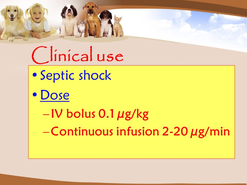 Clinical use Septic shock Dose IV bolus 0.1 µg/kg