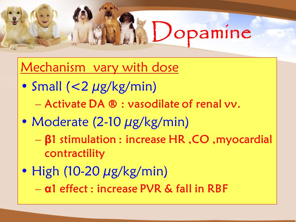 Dopamine Mechanism vary with dose Small (<2 µg/kg/min)
