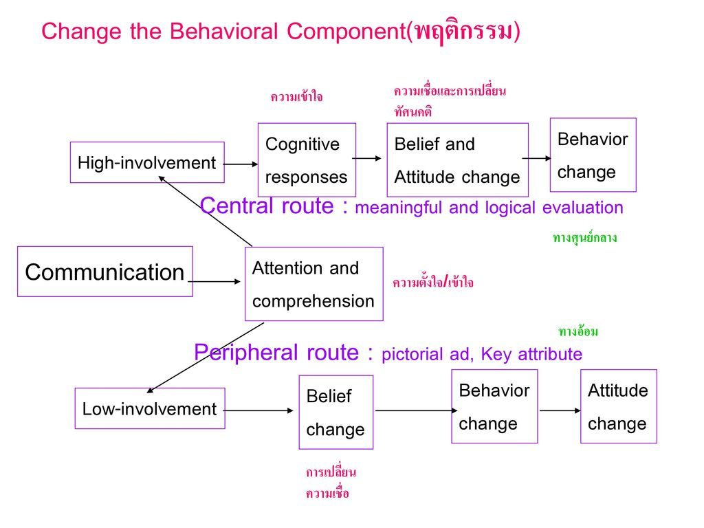 Change the Behavioral Component(พฤติกรรม)