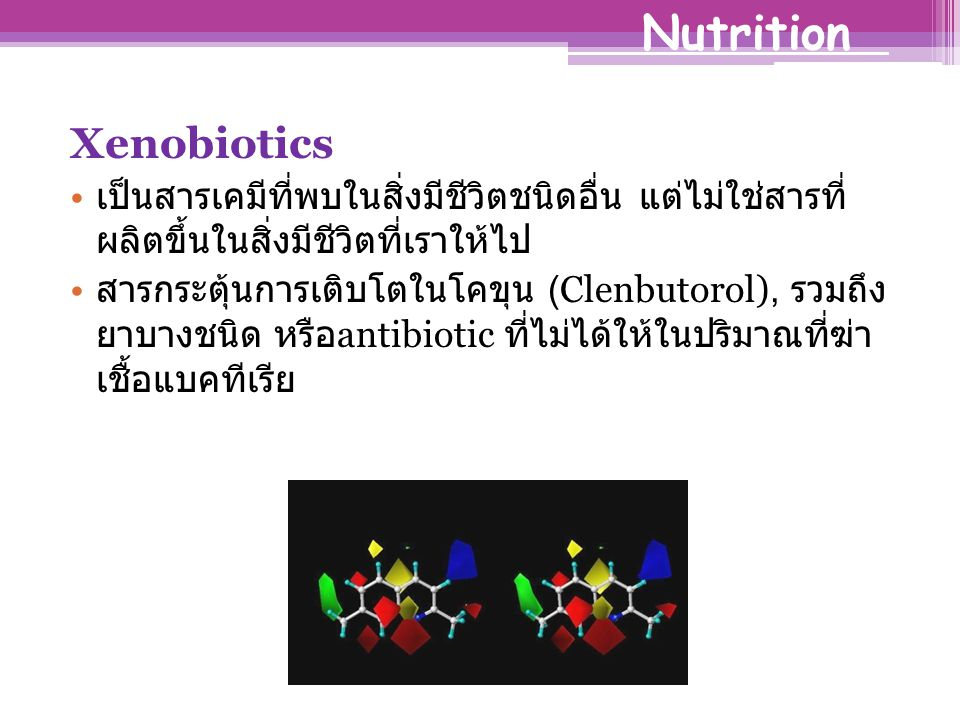 Nutrition Xenobiotics