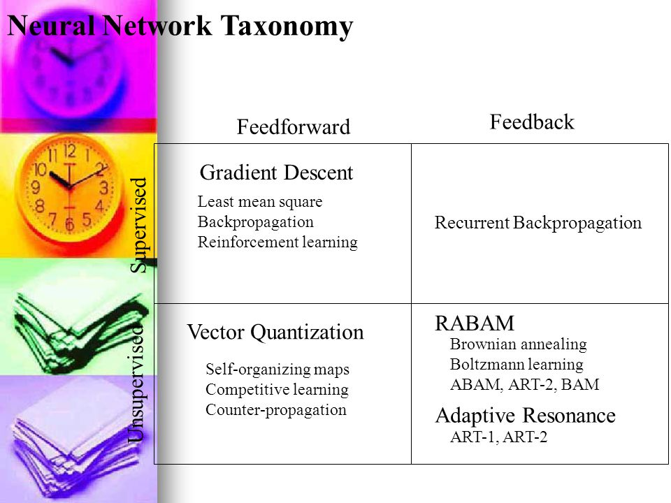 Neural Network Taxonomy