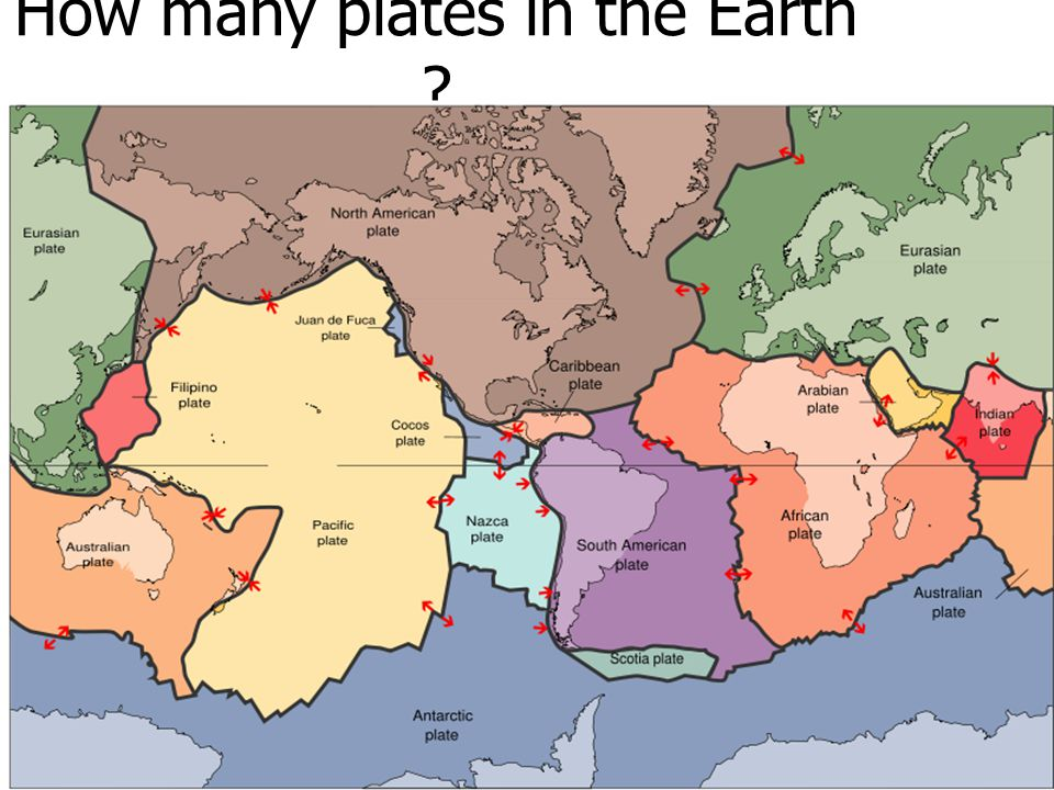 How many plates in the Earth