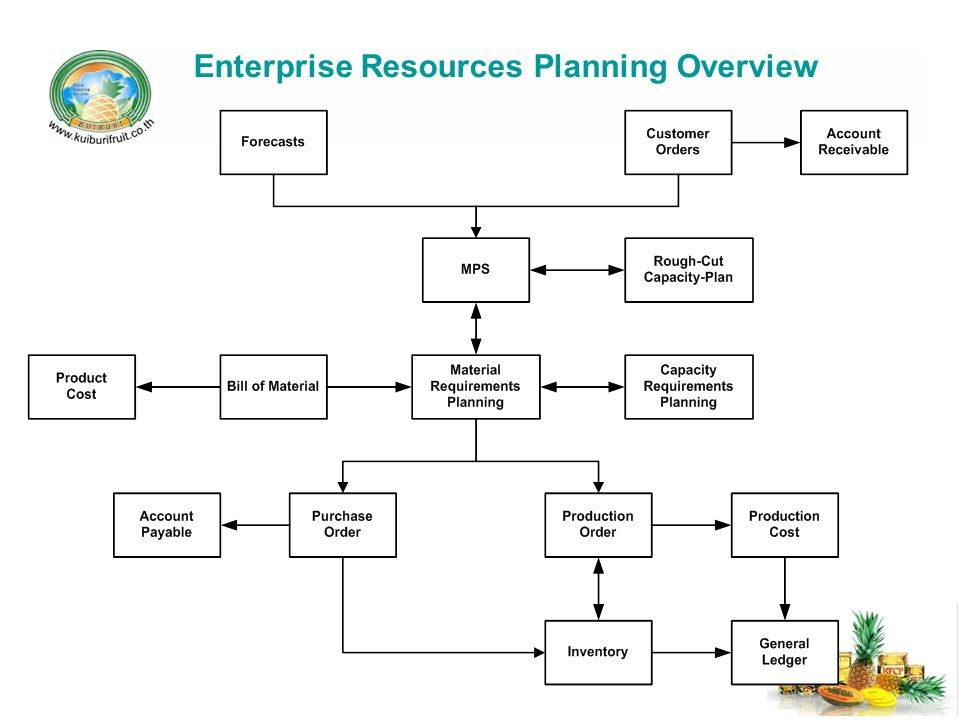 Enterprise Resources Planning Overview