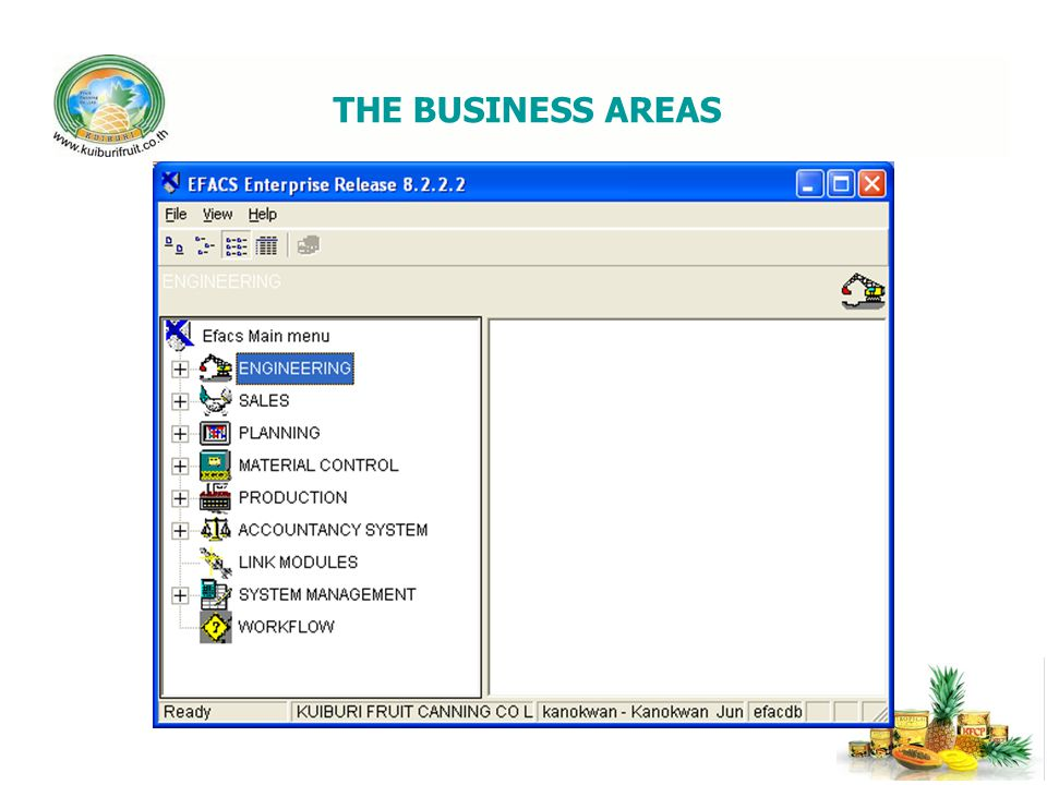 THE BUSINESS AREAS