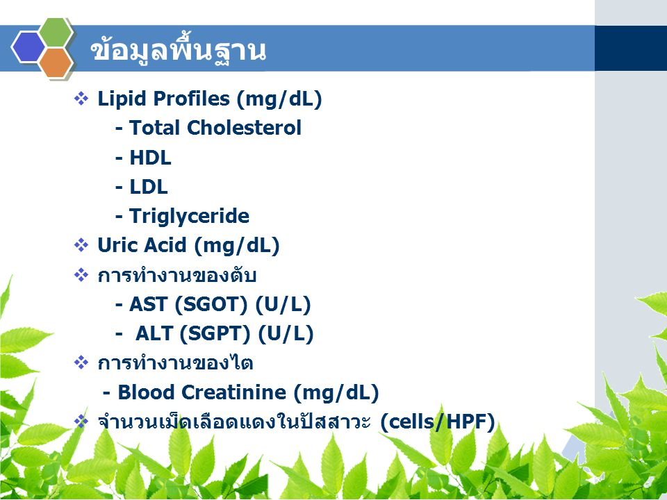 ข้อมูลพื้นฐาน Lipid Profiles (mg/dL) - Total Cholesterol - HDL - LDL