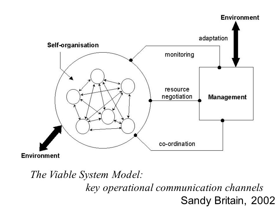 The Viable System Model: