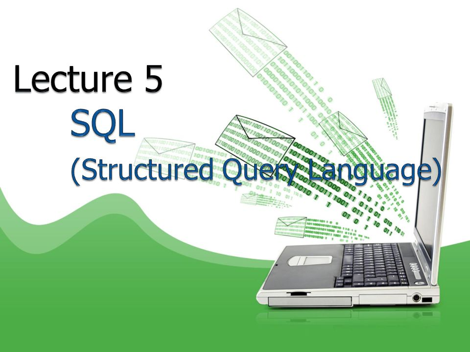 Lecture 5 SQL (Structured Query Language)