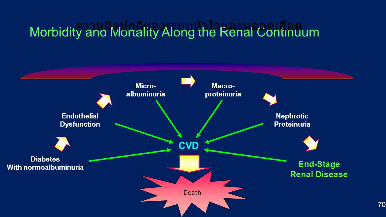 Morbidity and Mortality Along the Renal Continuum