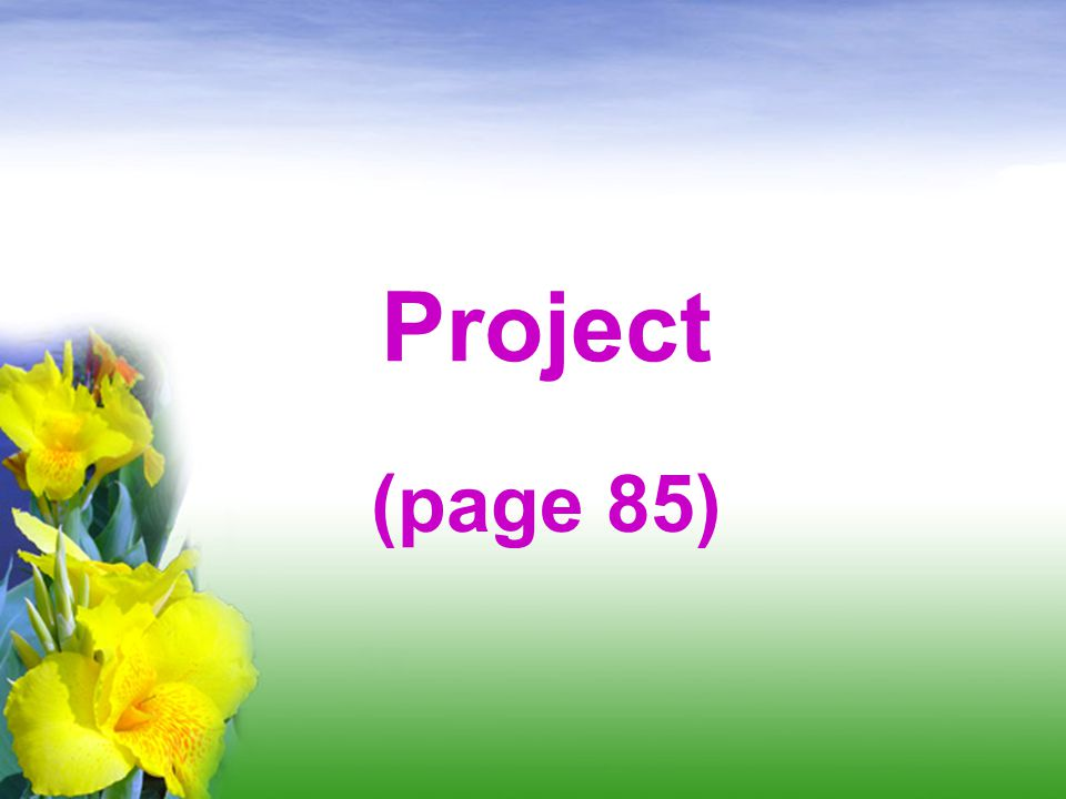 Project (page 85)