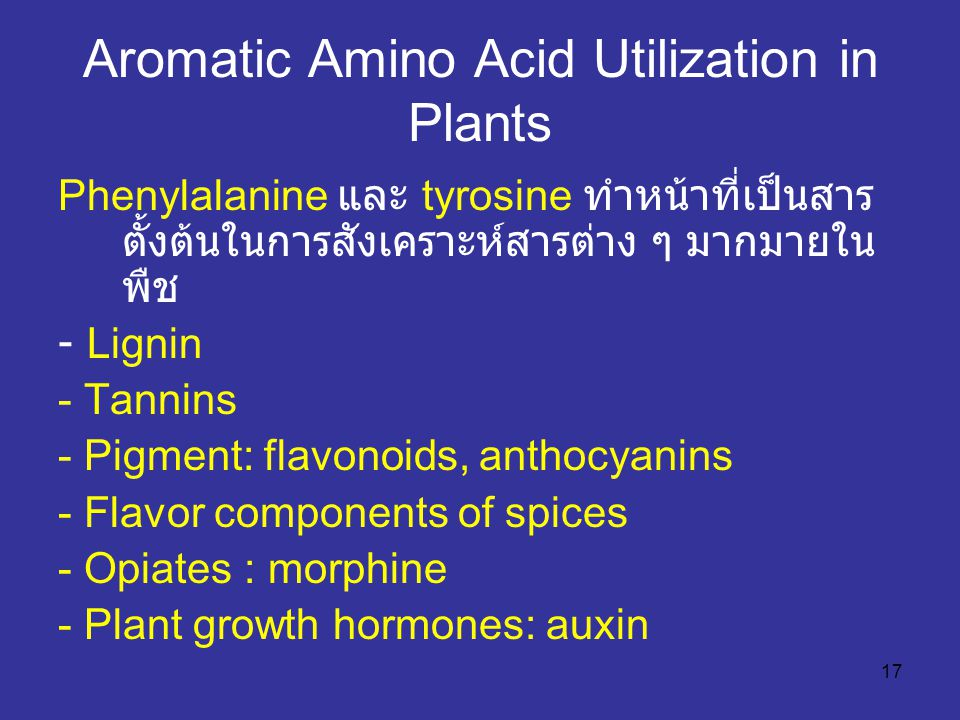 Aromatic Amino Acid Utilization in Plants