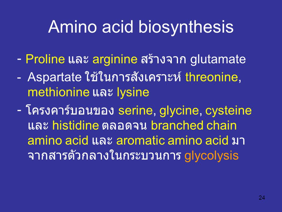 Amino acid biosynthesis