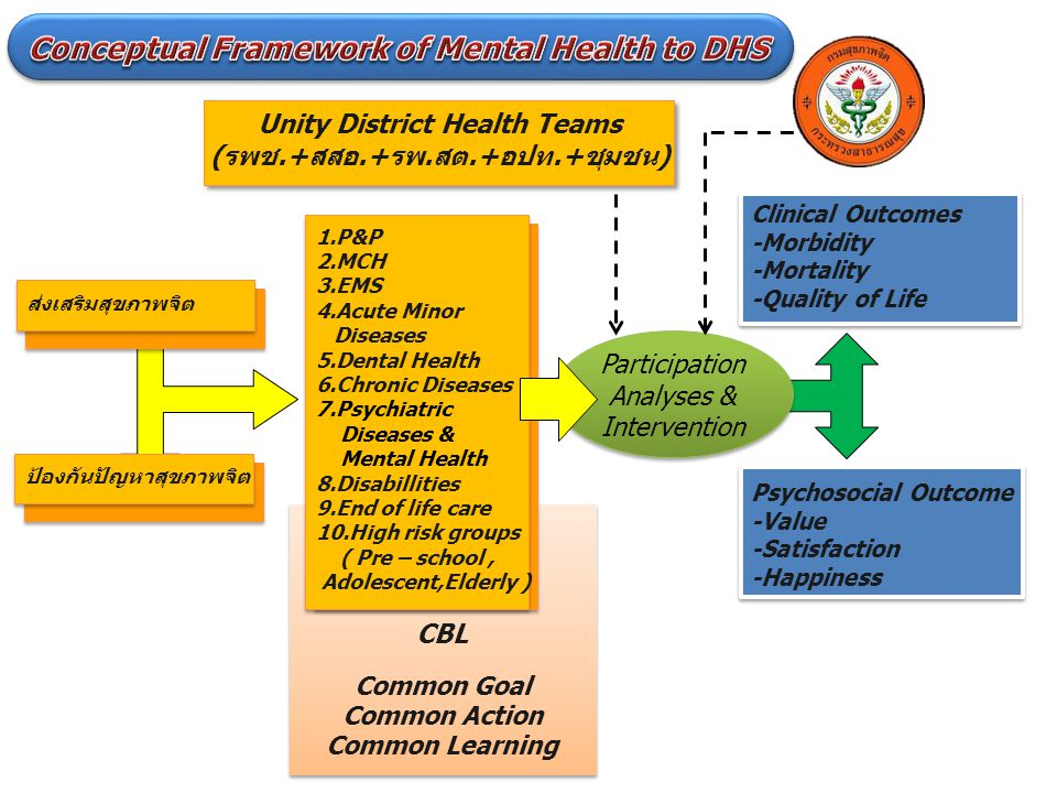Conceptual Framework of Mental Health to DHS