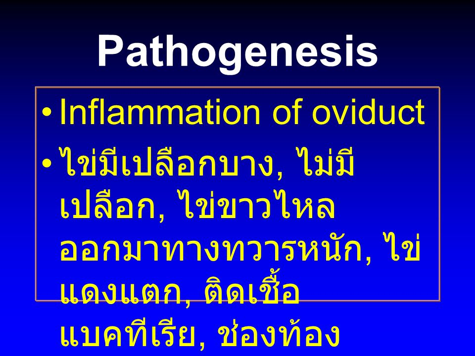 Pathogenesis Inflammation of oviduct