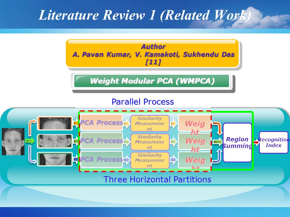 Literature Review 1 (Related Work)